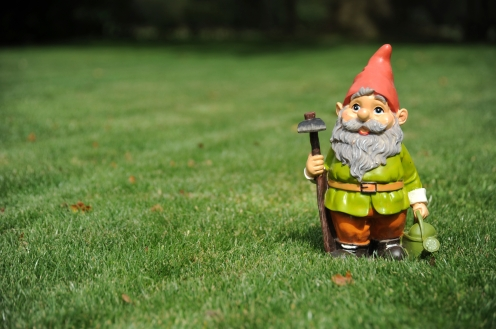 A gnome from home