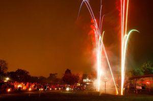 bristol zoo fireworks