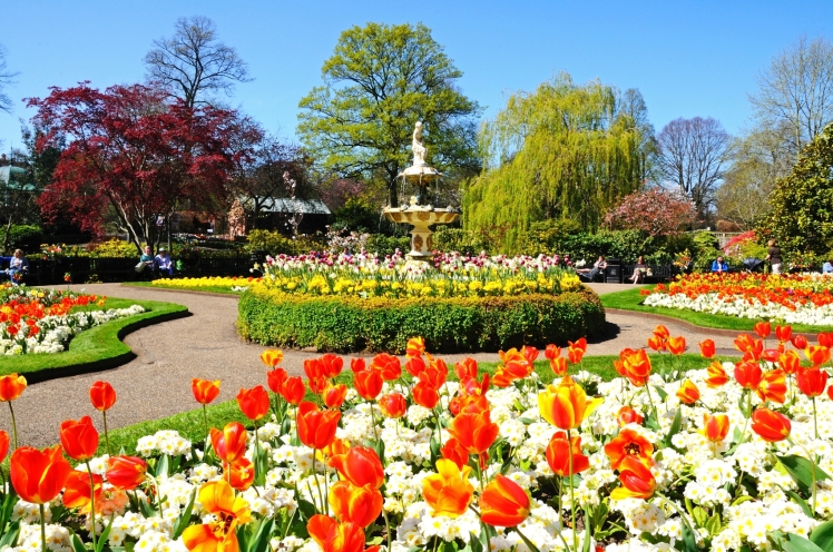 Dingle Garden