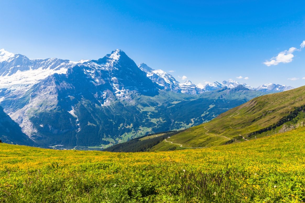 Panorama view of Eiger and otehr peaks