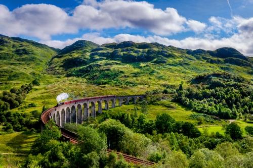 Potter train