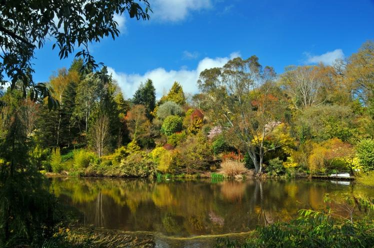Dingle Gardens