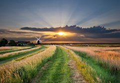Norfolk: an unspoilt coast, beautiful low-lying countryside and the stunning Broads and wildlife make this a lovely place for a peaceful walk.